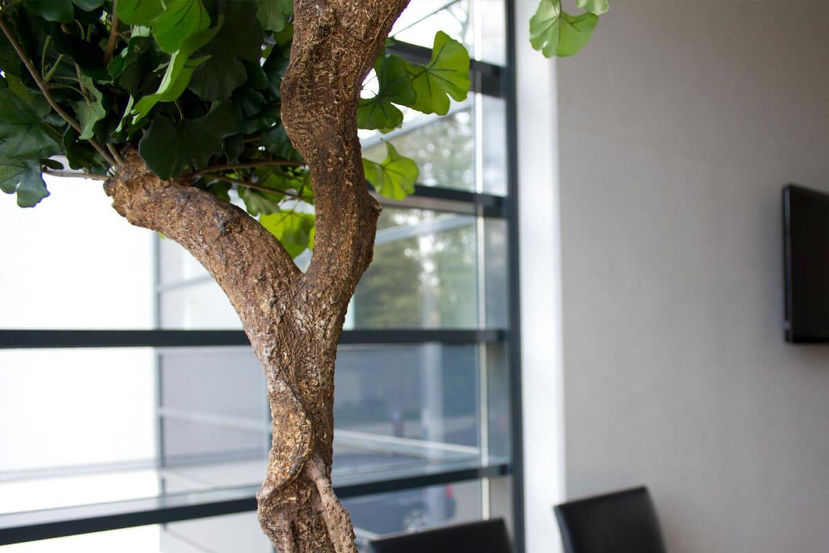 Baum Konferenzraum Drücke Dortmund